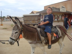 Burro Ride